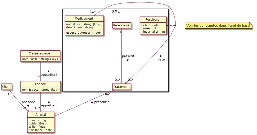mcd/MCD_XML.png